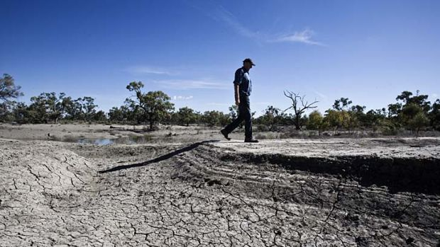 Cracking up: Drought stalks the land from the Murray-Darling Basin to Queensland.