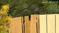 A hat is hanging on a Logan fence near where a woman's body was found, she was wearing a McDonald's uniform.