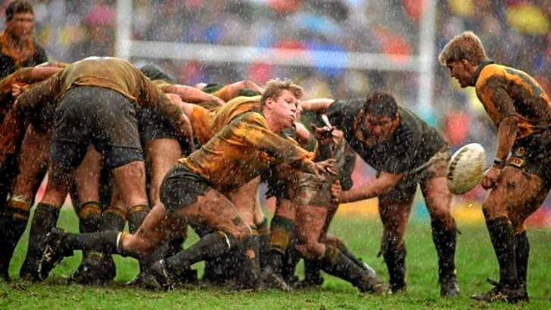Mud and guts: Ewen McKenzie's Wallabies slug it out at Newlands in their first Test against the Springboks after their ...