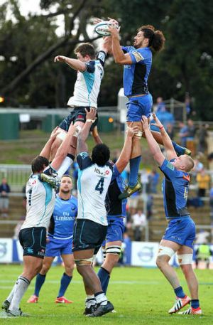 Down in front: Sam Wykes of the Western Force is beaten to the ball at the lineout.