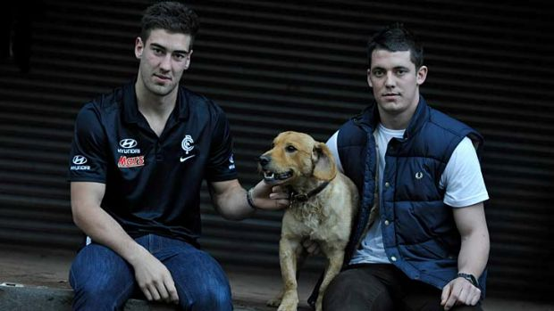 Close bond: Carlton player Luke Mitchell with brother David, who was seriously injured while trying to break up a fight.