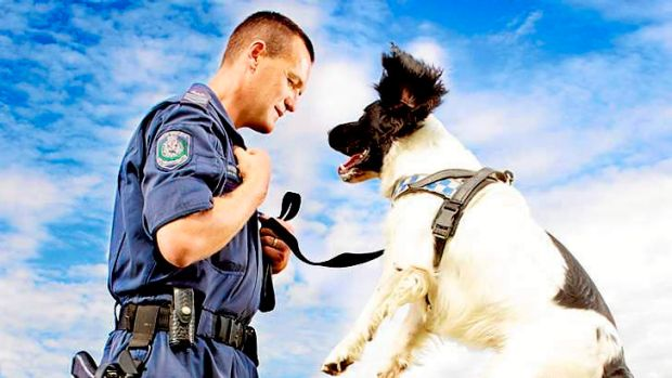 It's a dog's life...  NSW Police Sergeant Dave Wright and Bertie.