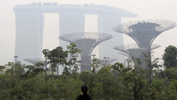 Fuzzy: The Marina Bay Sands hotel and Supertrees at Gardens by the Bay are covered in haze in Singapore.