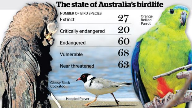 No flights of fancy... the threat of extinction is very real.
