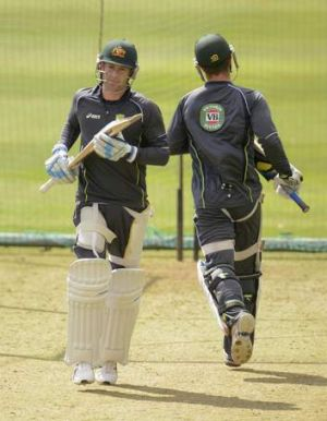 Tuning up: Michael Clarke and Matthew Wade in the nets.