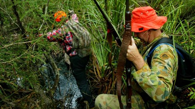 Neutral: State forests could get the same hunting rules as national parks.