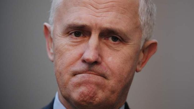 Coalition MP Malcolm Turnbull: direct action policy on climate change ''short-term''.