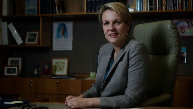 Health Minister Tanya Plibersek has announced extra funding for research into primary care including a partnership with ...
