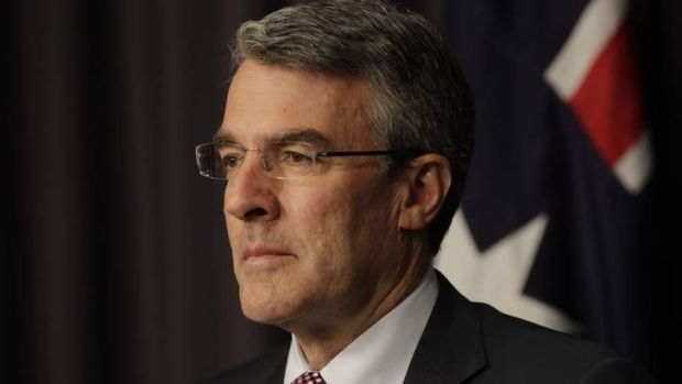 Attorney-General Mark Dreyfus is arguing Australia's case at The Hague to end Japan's whaling program.