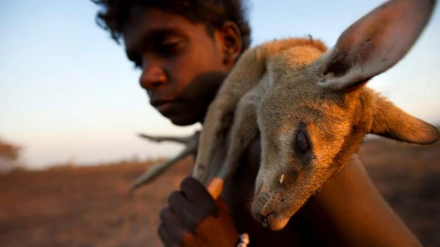 Home, sweet homeland: Jules Nganbe carries a wallaby to a campfire in the traditional Aboriginal lands.