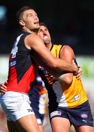 Something's up there: Essendon's Tom Bellchambers and Dean Cox of West Coast contest a boundary throw-in.