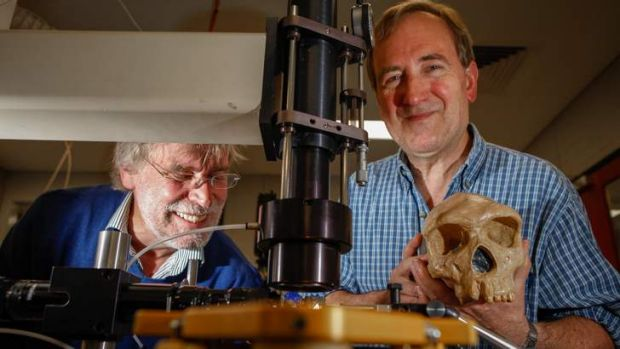 Find ... Rainer Grun (left) and Professor Chris Stringer from the Natural History Museum in London.