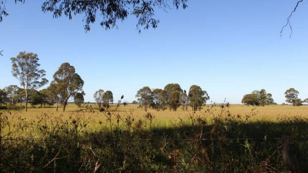 Options: Badgerys Creek, one of two potential sites for the proposed second Sydney Airport.