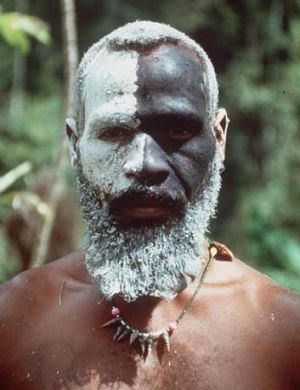 A Papuan tribe member.