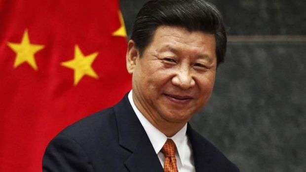 State sector remains unchallenged ... China's President Xi Jinping.