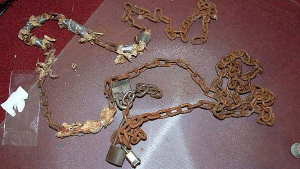 Gruesome scene: chains and locks are pictured in Ariel Castro's house.