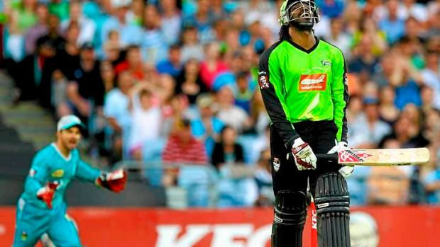 Star West Indies batsman Chris Gayle soaked up money and deliveries during his stint at the Sydney Thunder, says former ...