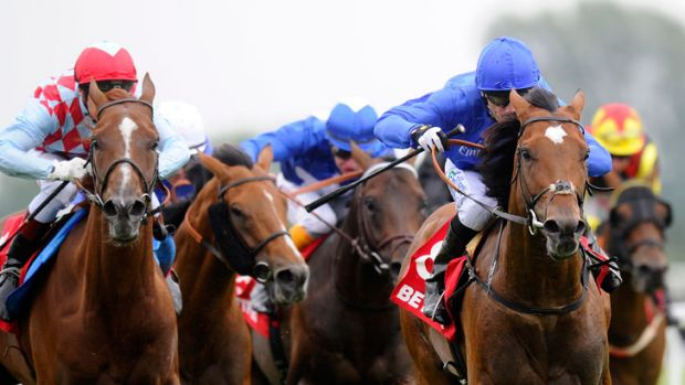 Cup bid: Royal Empire wins the Geoffrey Freer Stakes at Newbury and is Melbourne-bound.