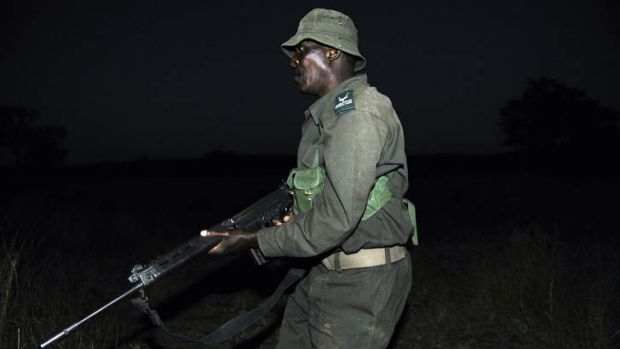 A ranger from South African National Parks (SANParks) participates at a night patrol exercice with South African ...