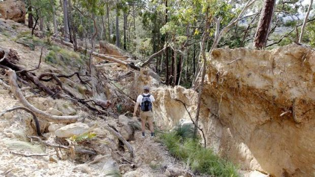 Environmental catastrophe: Part of a collapsed hillside at Mount Sugarloaf.