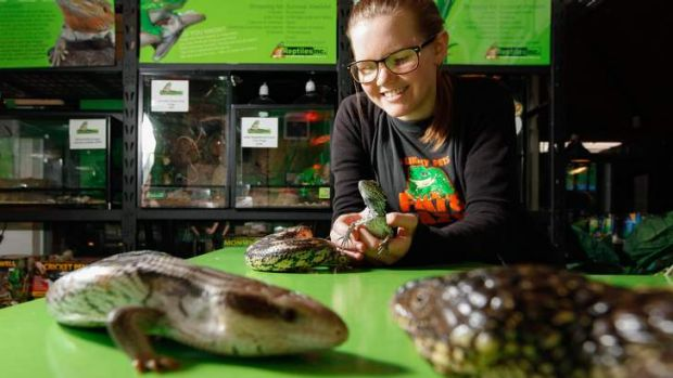 There are plenty of reptiles Canberrans can purchase and own as pets legally. Jessica Kelly, 17 of Gordon works at ...