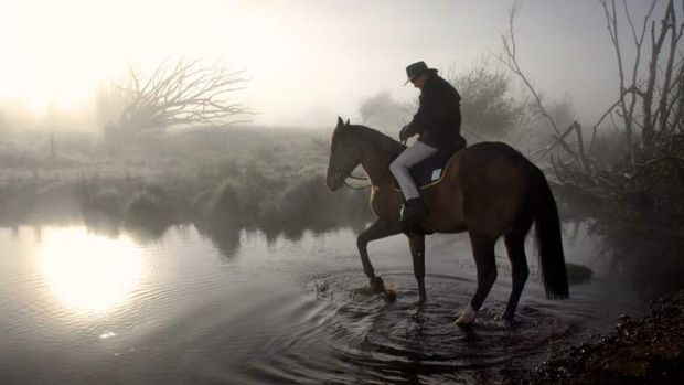 Andrew Meares' winning entry for the portrait photograph of the year. Pictured: Edward Fernon and Archer at the grave ...