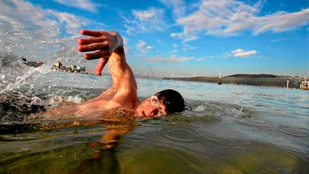 One more for the count: Rob Brown from Manly takes an early morning swim at Manly Cove.