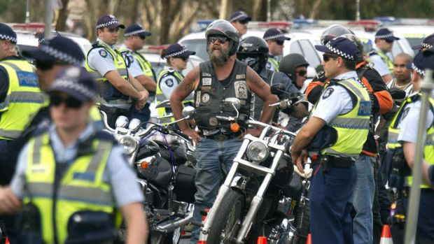 The taskforce, established by the Australian Crime Commission, may become a template for battling bikie gangs including ...