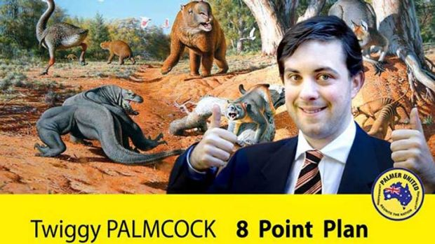 Palmcock's fake campaign for the Palmer United Party. <em>Source: Facebook</em>