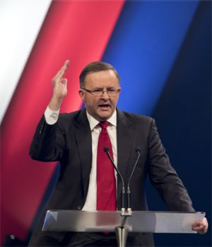 "Anthony Albanese: ""I like fighting Tories. That's what I do."""