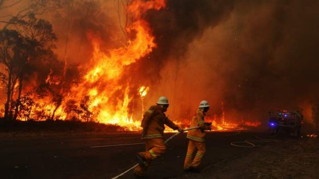 A Rural Fire Service brigade abandons a truck during the Sydney bushfires last week.