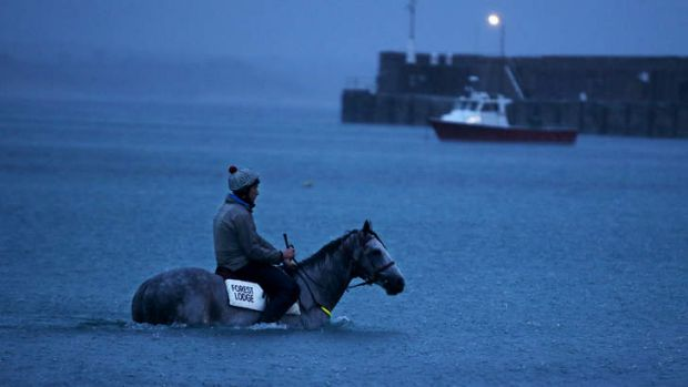 Hometown hero: Puissance De Lune has a dip in Lady Bay beach at Warrnambool.