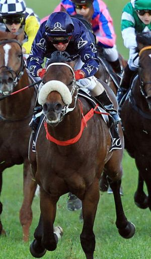 """""""It was a very hard decision but I just wanted to be on him"""": Jim Cassidy on Zoustar."""