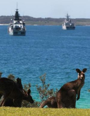 Hoo roo: Watched by a pair of kangaroos, naval ships from several countries gather in Jervis Bay before the Naval Fleet ...