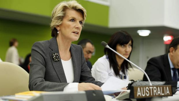 Learning curve ... Foreign Affairs MinistserJulie Bishop addresses the UN General Assembly last month about development ...