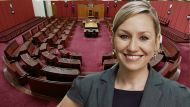 The Greens and the new Senate (Video Thumbnail)