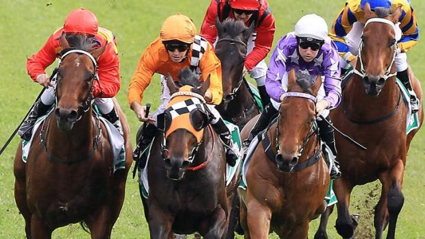 Rock Hero charges home to win at Randwick.
