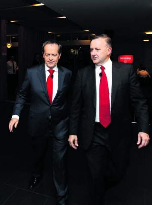 Contestants: Bill Shorten, left, with Anthony Albanese.
