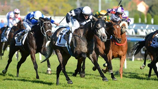 Fawkner, ridden by Nick Hall, shows the rest of the field a clean pair of hooves in the Caulfield Cup.