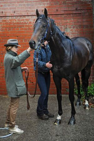 Trainer Gai Waterhouse with Fiorente after a trackwork session at Moonee Valley.