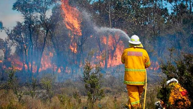 NSW fire crews fight the State Mine fire.