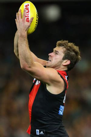 From Essendon to Western Bulldogs: Stewart Crameri.
