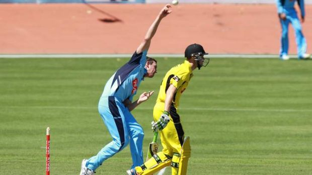 In the frame: Josh Hazlewood has been in great form in the Ryobi Cup.