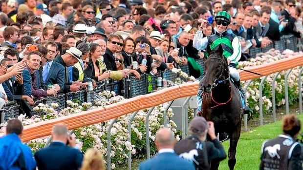 """""""We did it!"""": Chad Schofield salutes after winning the Cox Plate on Shamus."""