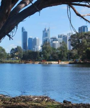 Would you swim in the Swan River for a splash of cash?