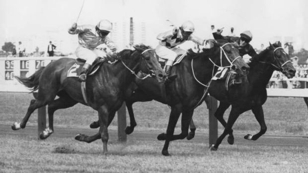 Epic underdog: Frank Reys pilots Gala Supreme, centre, to victory in 1973.