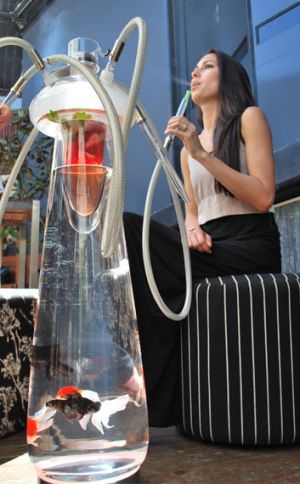 The top section of the shisha is filled with cool liquid and ice - it doesn't heat the water the fish are in.
