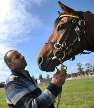 """He's a small horse with a big engine. If he ran on Saturday, he couldn't run on Tuesday"": Trainer Saab Hasan on his ..."