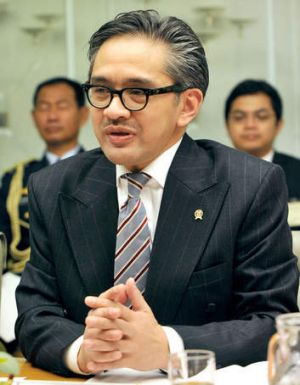 Indonesia's accusations unsettling: Indonesian Foreign Affairs Minister Marty Natalegawa.
