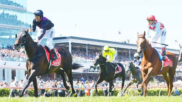 Hands and heels: Damien Oliver boots Fiorente (left) to victory in the 2013 Melbourne Cup.